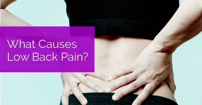 What Causes Low Back Pain? image